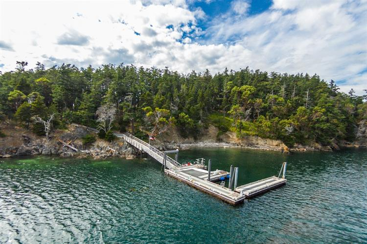 1 Trump Island, Decatur Island, WA 98221