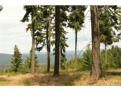 13 Pinnacle Lane , Cle Elum, WA