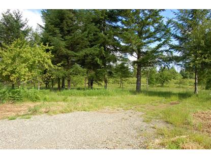 2121 140th Ave SW , Tenino, WA