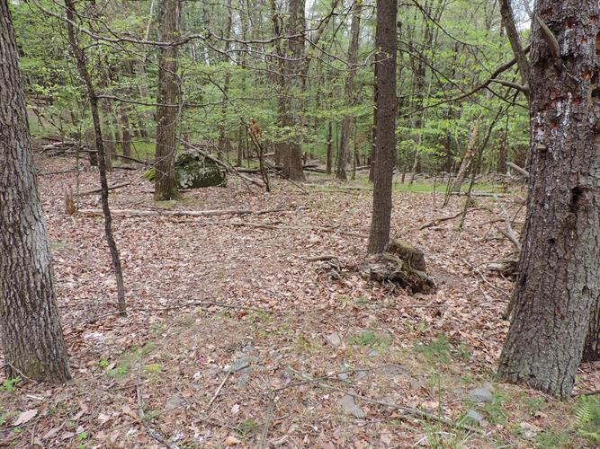 Lot 15 CEDAR Ct, Hawley, PA 18428