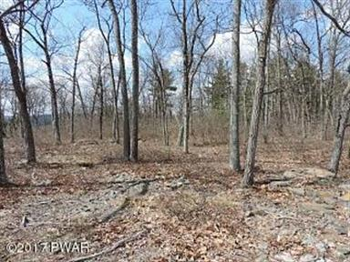 Lot 40 Blue Heron Way, Hawley, PA 18426 - Image 1