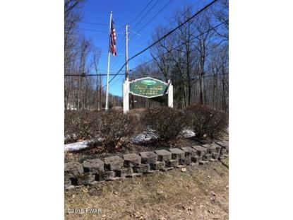 Lot 116 LOWER LAKEVIEW Dr, Hawley, PA
