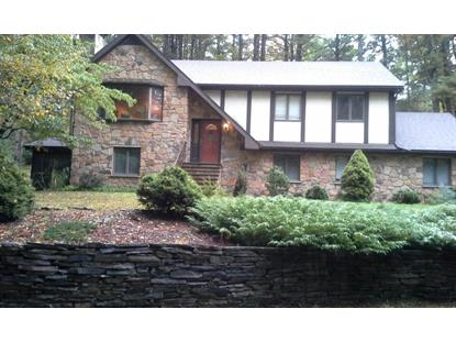 104 SHINY MOUNTAIN Rd, Greentown, PA