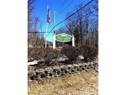 Lot 43 Oak Ridge Ct, Hawley, PA