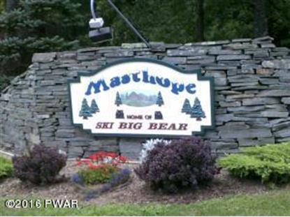 Lot 105 UPPER INDEPENDENCE Dr, Lackawaxen, PA