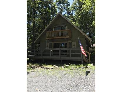 104 Corral Ln Lords Valley, PA MLS# 17-3601