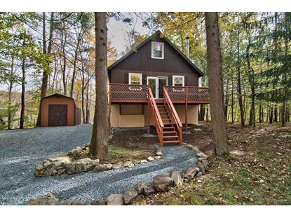 3902 Navaho Ln Lake Ariel, PA MLS# 18-4847