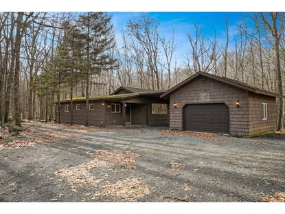 803 Chestnut Ct Lords Valley, PA MLS# 19-126