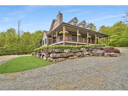 152 Heights Rd Equinunk, PA MLS# 20-1510