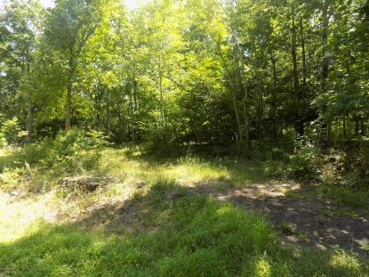 1057 Cherry Lane Rd Henryville, PA MLS# 20-2685