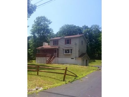 12524 High Meadow Dr East Stroudsburg, PA MLS# 20-3813