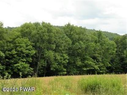 Lot 1 Howe Mtn Rd Sterling, PA MLS# 20-831