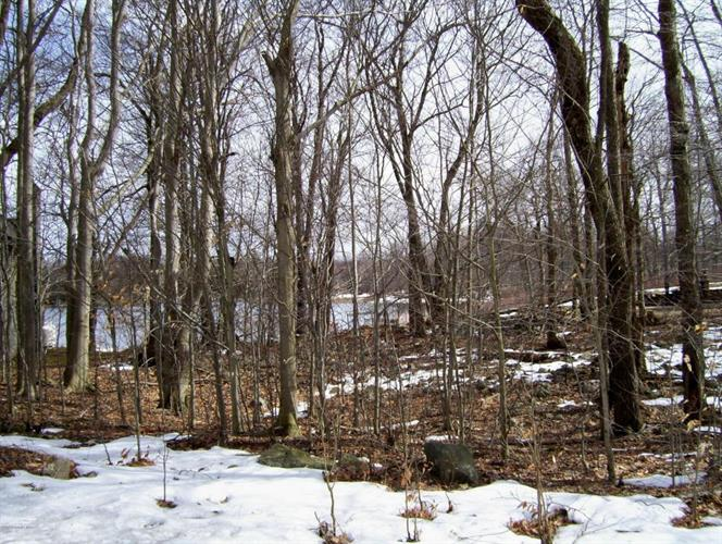 Lot 152 Waterfront Drive, Lakefront Lo Dr, Tobyhanna, PA 18466