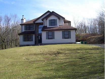 323 Russell Ct Effort, PA MLS# PM-46438