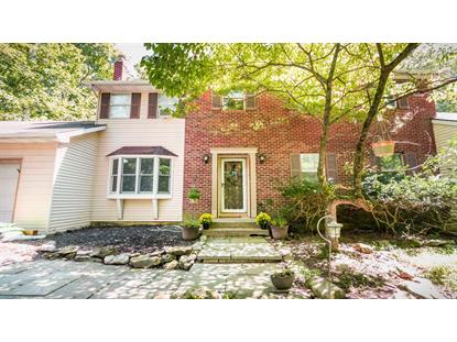 527 Hallowood Dr East Stroudsburg, PA MLS# PM-61765