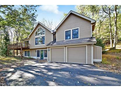 460 Spruce Dr Tannersville, PA MLS# PM-62703