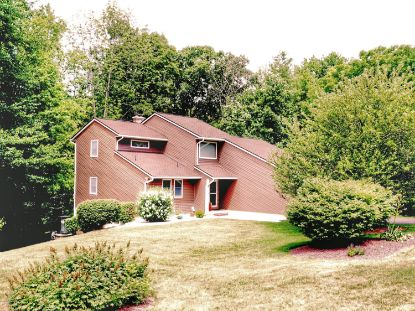 301 Blue Mountain Drive New Ringgold, PA MLS# PM-79823