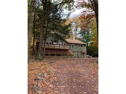 14 Birchwood Rd Lake Harmony, PA MLS# PM-82467