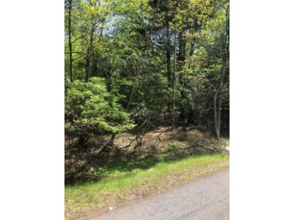 Lupine Dr Lake Harmony, PA MLS# PM-82493