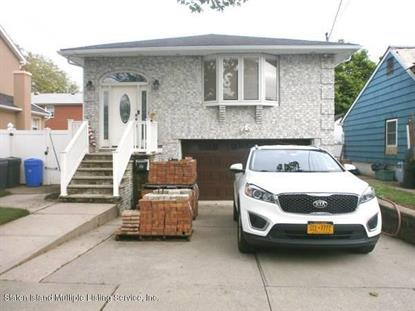 254 10th Street Staten Island, NY MLS# 1129833