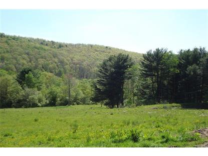 10560 Youngs Road, Cold Spring, NY