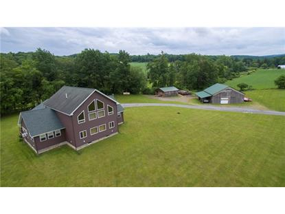 10095 Valley Road, Dansville, NY