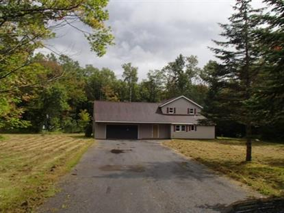 11746 Bell Hill Road, Deerfield, NY