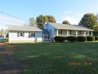 10815 Kelsey Road, Clyde, NY