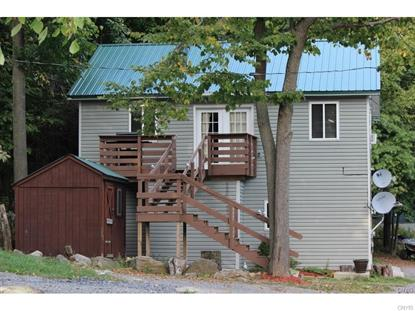 32205 Webster Tract , Theresa, NY