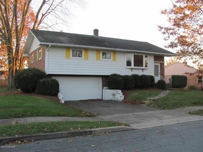 811 N 10TH ST Selinsgrove, PA MLS# 20-70196