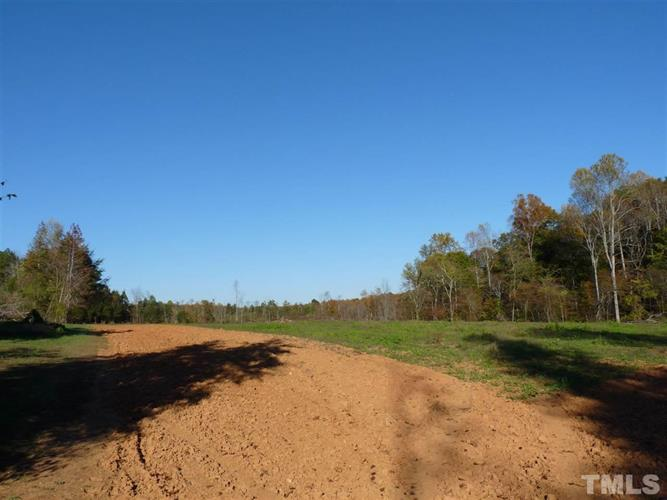 16.73 acres NC 157 Highway, Rougemont, NC 27572