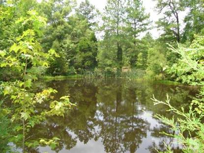 280 Chambers Road  Rougemont, NC MLS# 2143833