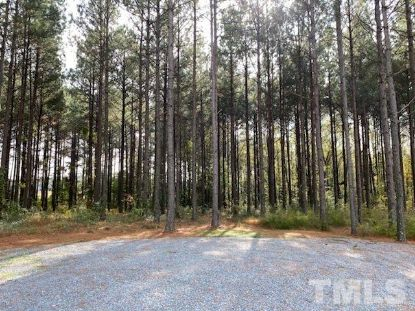 1097 Grace Road Benson, NC MLS# 2352469