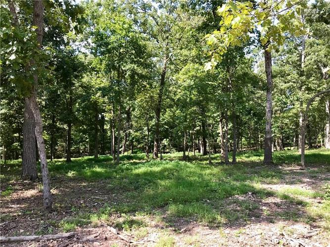 Lot 12 Forrest  RD, Pea Ridge, AR 72751 - Image 1