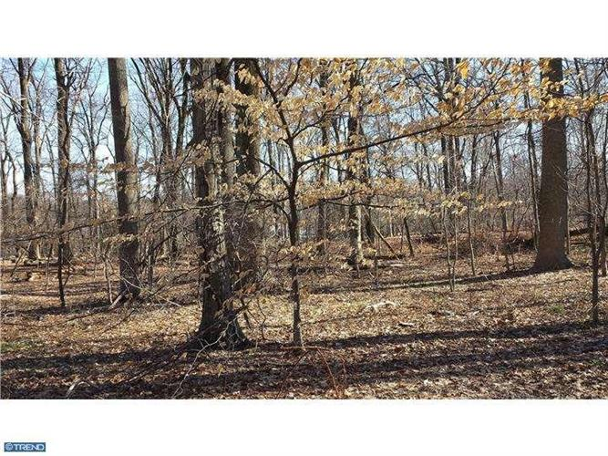 LOT 002 HONEY HOLLOW RD, Solebury, PA 18938