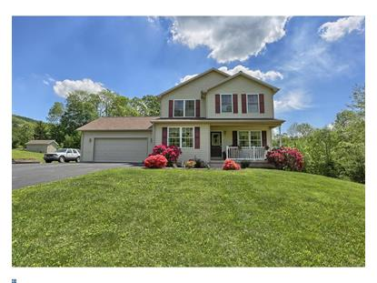 17 CEDAR CREEK DR Ashland, PA MLS# 6991791