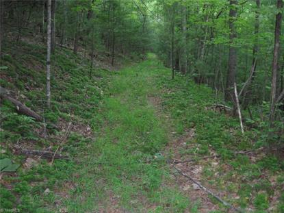 TBD Poorhouse Creek Road Stuart, VA MLS# 854357