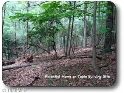 Off Benge Ashe Road Purlear, NC MLS# 906812
