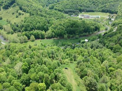 LOT 1 Nc Highway 88  Clifton, NC MLS# 918035