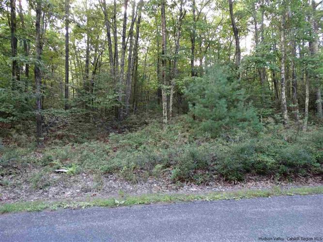 Lot #2 Bennett Road, Napanoch, NY 12458