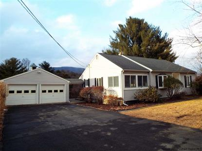 297 Blue Mountain Rd. Saugerties, NY MLS# 20184828