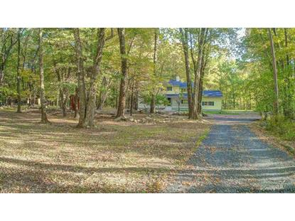 271 Tillson Lake Road Wallkill, NY MLS# 20192620