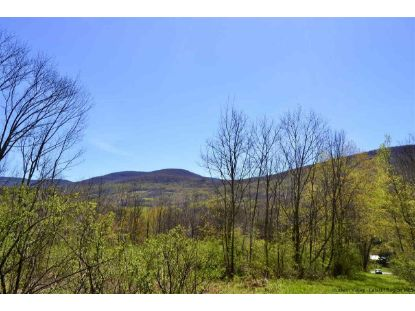 TBD Howard Greene Rd. Road Roxbury, NY MLS# 20201462