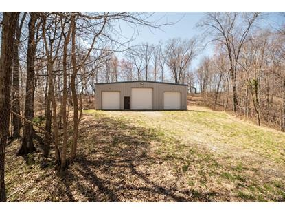1415 Peters Creek Road Big Island, VA MLS# 317658