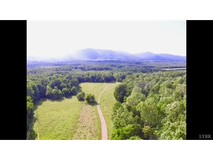 1453 Waugh Switch Road Big Island, VA MLS# 323878