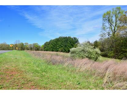 0 Route 130  Madison Heights, VA MLS# 324613