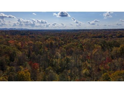 0 Lot 3 Isabel Acres  Madison Heights, VA MLS# 328145