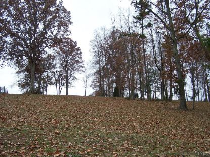 417 Country Estates Road  Appomattox, VA MLS# 328692