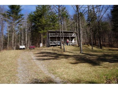11111 Forest Rd  Amherst, VA MLS# 328966