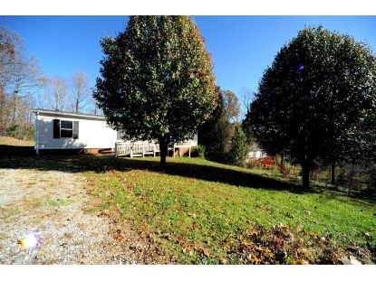 175 Farmdale Dr  Madison Heights, VA MLS# 329156